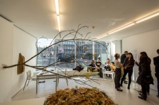 Patrick Lydon's 'Centre for Endless Growth' Installation at TENT Gallery