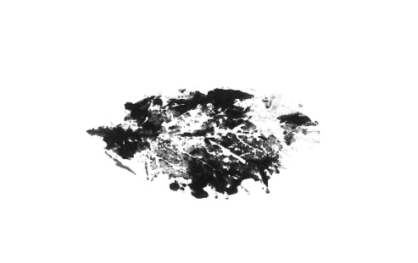 print of leaf