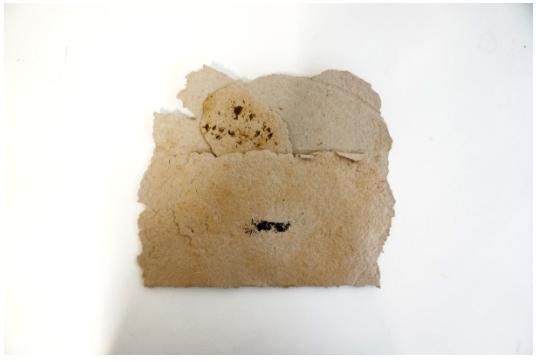 artist book 'Moss Letter'